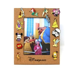 Cork Board Pin Collectors Picture Frame